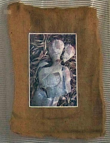 Mes images colllées sur papier deux têtes briques et ciment
