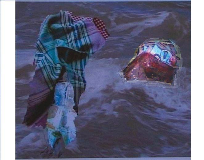 Mes images la mer le nourrisson 023