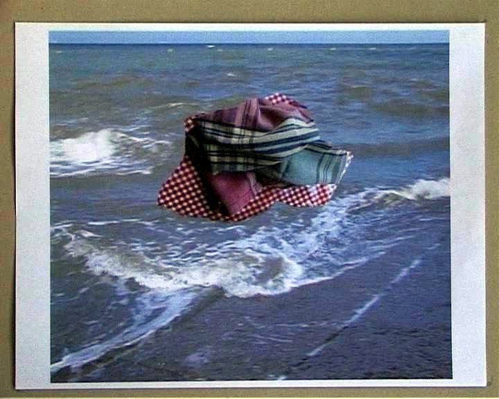 Mes images la mer le nourrisson 029